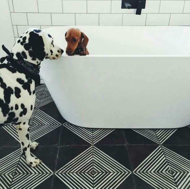 Artisan tiles for bathrooms Sydney Karoo